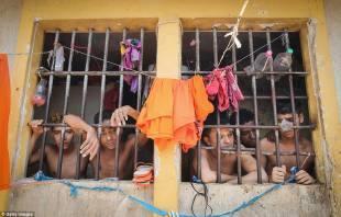pedrinhas galera sovraffollata