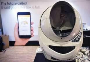 robot per pulire la lettiera dei gatti