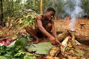 i baka vivono nell africa centrale