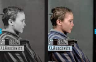 Auschwitz a colori 2