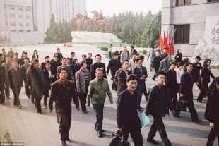 al lavoro a pyongyang