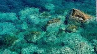 le acque di zannone