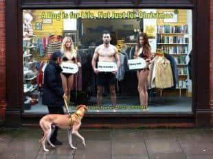 Protesta contro l abbandono dei cani