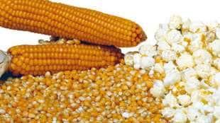 pop corn1