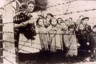 bambini al campo di auschwitz