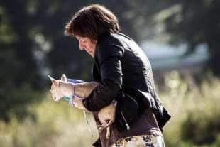 cani salvataggio amatrice 7
