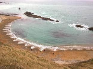 beach-cusps-2-712742_tn.jpg