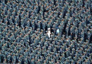 studenti cinesi in addestramento militare 4