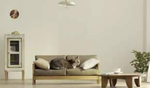 Un artigiano giapponese okawa kagu ha lanciato una linea for Arredamento per gatti