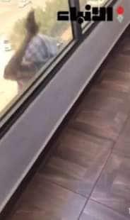 domestica vola dalla finestra 3