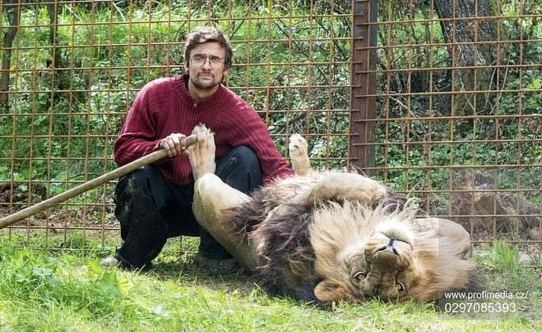 l uomo leone che si sta cercando in una donna excorts