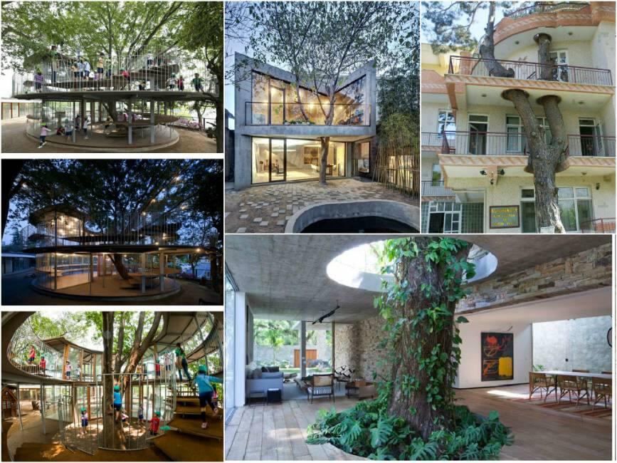 L 39 albero della vita alcuni architetti hanno inserito la natura nei progetti invece di distruggerla - Costruire casa albero ...