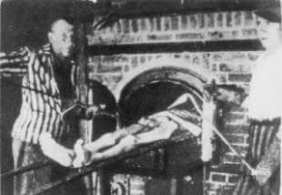 Auschwitz forno crematorio