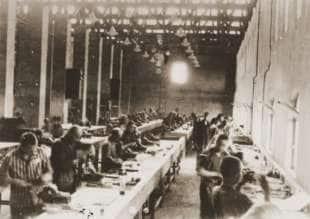 Auschwitz schiavi