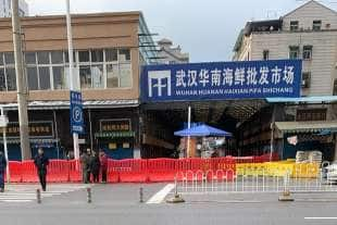 il mercato di whuan da cui parte il coronavirus cinese