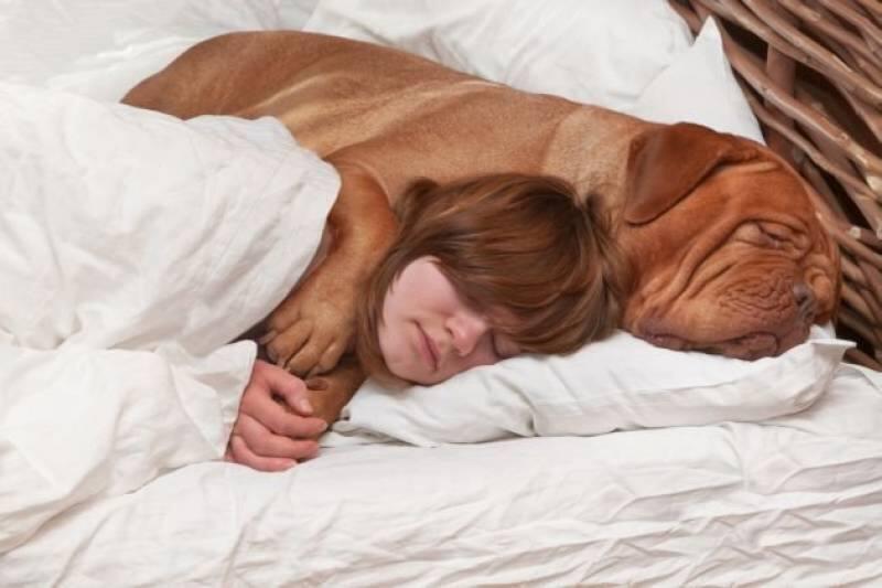 cani che dormono più di una ragazza
