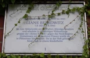 liane berkowitz 3