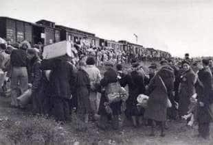 treno olocausto 1