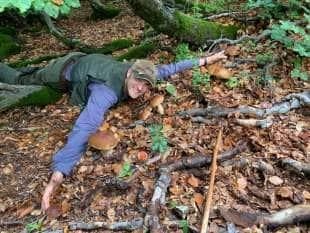 nicola cesari va nei boschi
