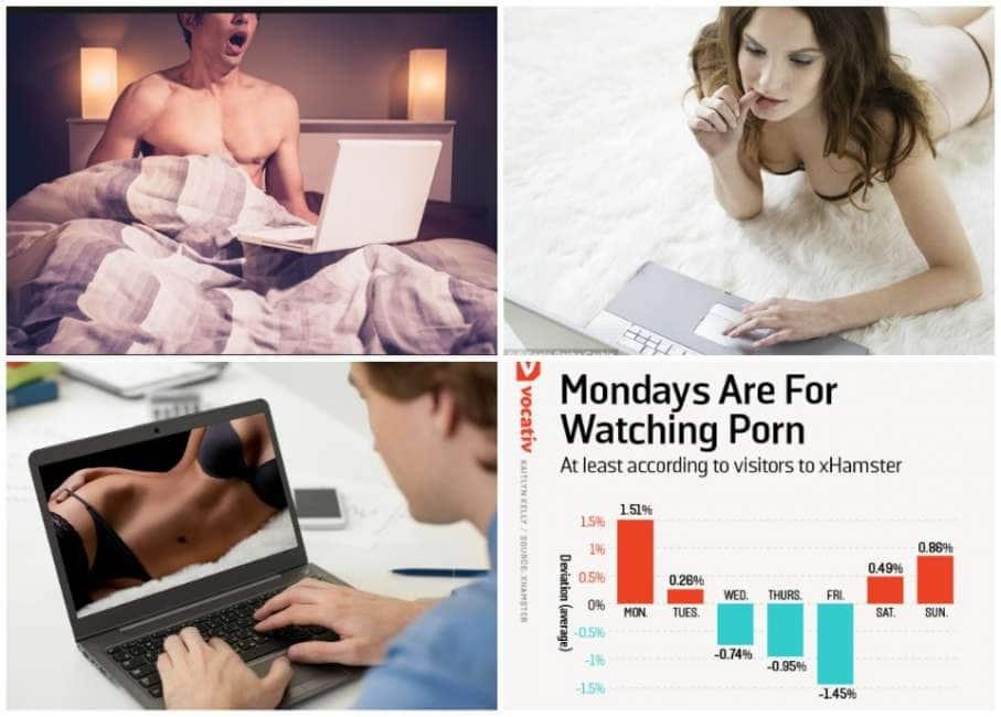 Hamster sito porno