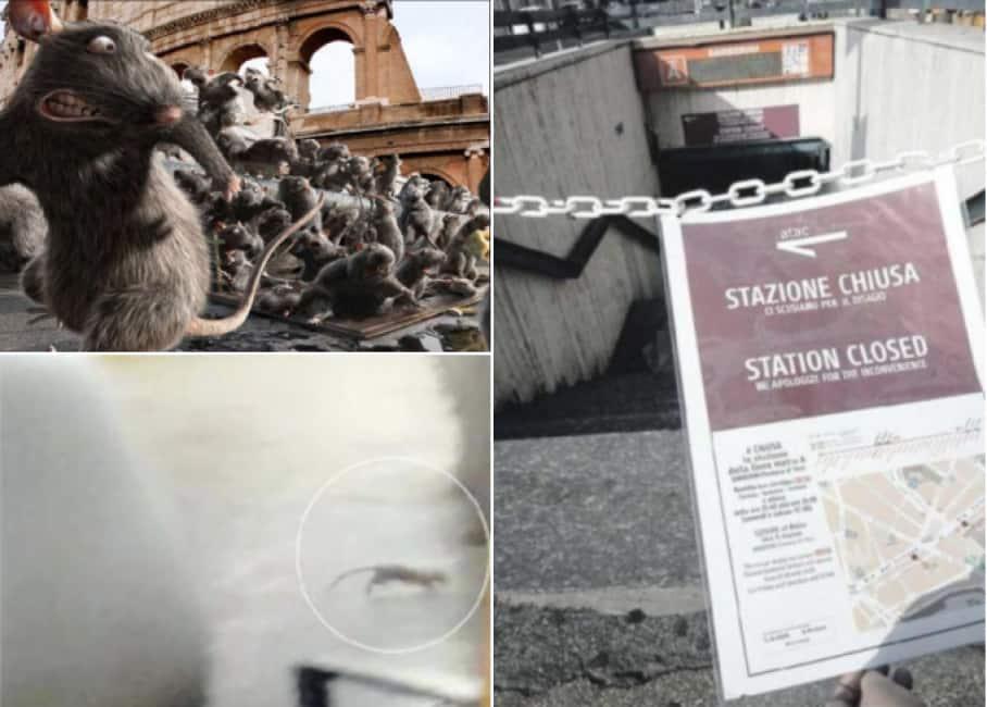 La stazione metro Barberini è invasa dai topi