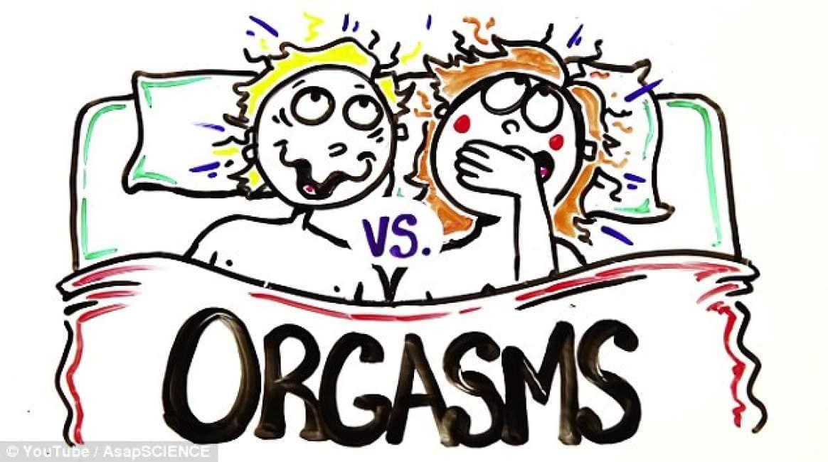 divertente gay sesso cartoni animati