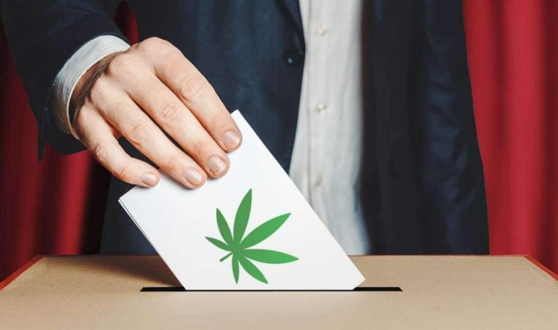 LE 500 FIRME ONLINE VE LE POTETE ANCHE FUMARE - DOPO IL MEZZO MILIONE DI SOTTOSCRIZIONI DIGITALI PER LA CANNABIS LEGALE,...