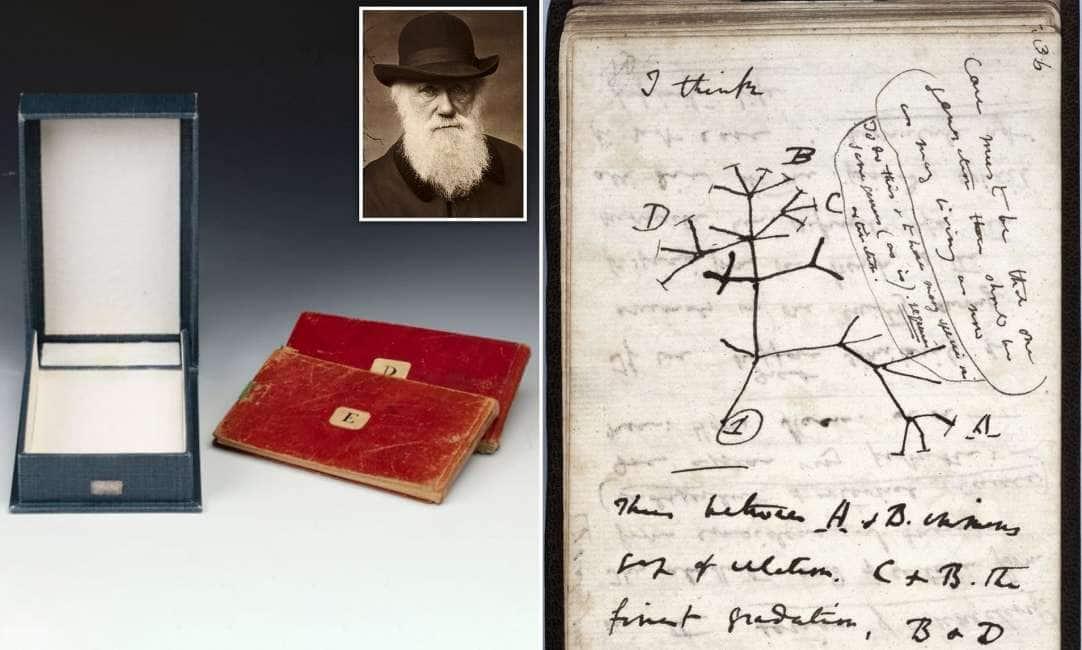 CIAONE DARWIN! – L'UNIVERSITÀ DI CAMBRIDGE SI ACCORGE DOPO 20 ANNI CHE SONO SPARITI DUE TACCUINI DI CHARLES DARWIN:...