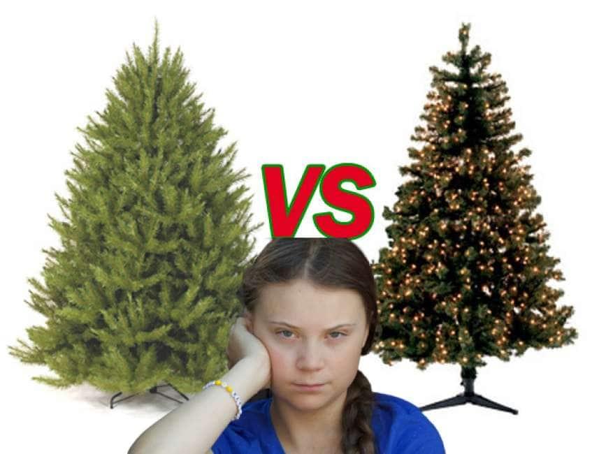 Albero Di Natale Vero Come Farlo Sopravvivere.Il Natale Come Lo Fai Sbagli L Albero Di Plastica Per Non Tagliare Quei Poveri Abeti Ma Siete M Politica